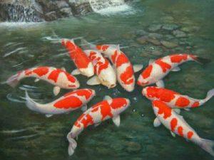 Mơ thấy cá là điềm báo gì, đánh con số nào may mắn?