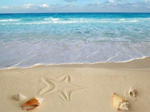 Mơ thấy đi biển là điềm báo gì, đánh con số nào may mắn?